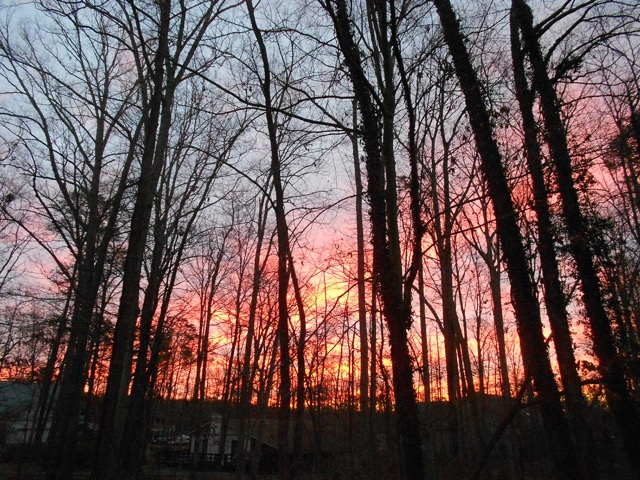 Wildfire at sunset in Kentucky