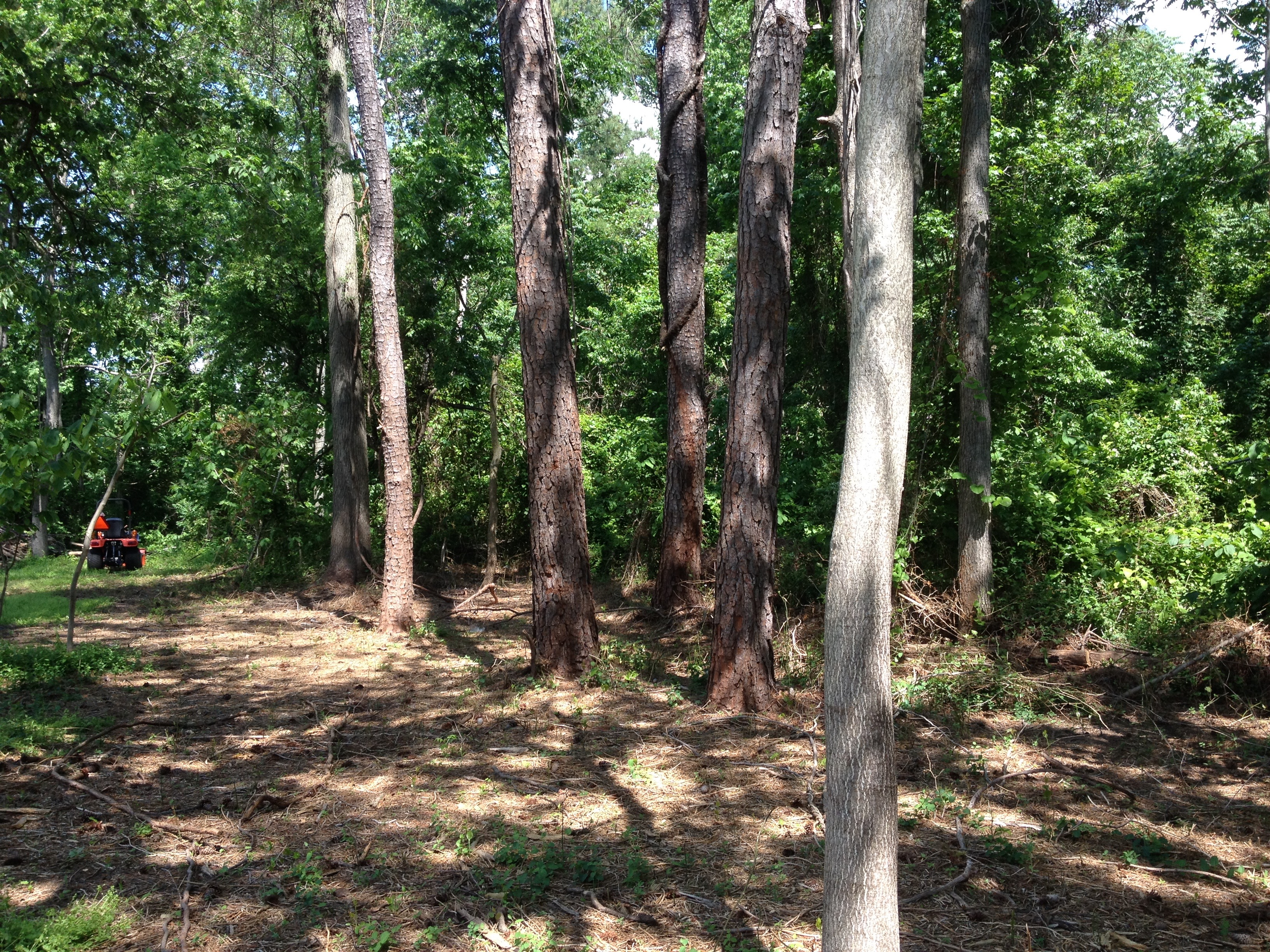30-foot buffer adding to defensible space