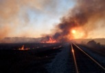 Grass fire in the sunset